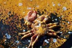 supporti per catering in ceramica siracusa (16)